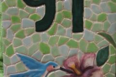 placas_20110215_1017830454